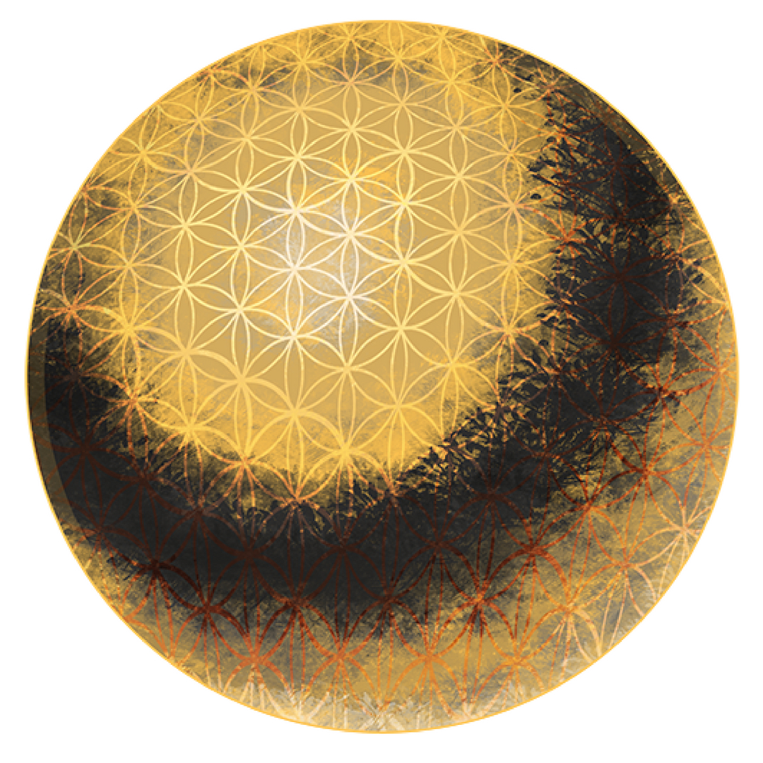 The Flower of Life meaning is the energetic force that flows through all sentient life. Learn more in this blog post!