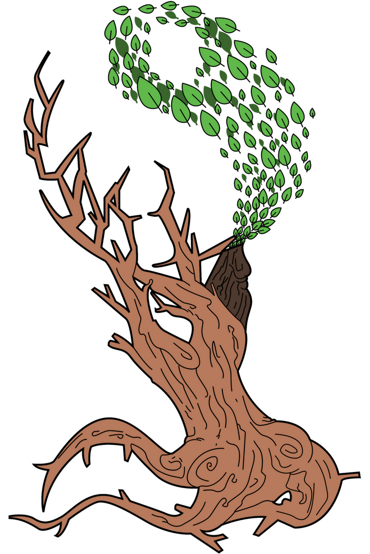 The Tree of Life meaning is a representation of our connection to the Earth, the Universe, and to all other life. Learn more in this blog post!